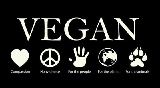 Vegan reasons