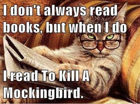 book meme 7 .jpg